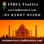 indiatrotter.com